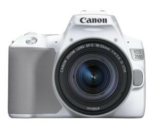 Canon EOS 250D - Et ægte kvalitetskamera til nybegynderen
